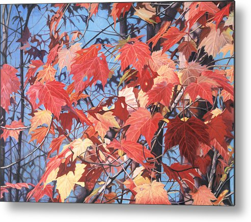 Oil Painting Metal Print featuring the painting Red Maples by - Harlan