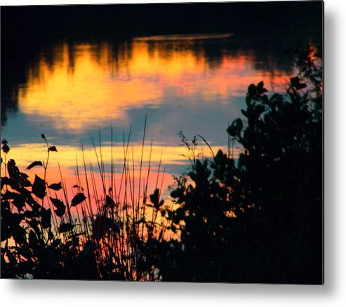 Metal Print featuring the photograph Reflection On The Lake by Robin Coaker