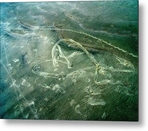 Heart Metal Print featuring the photograph Sand Heart by John Toxey