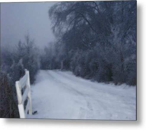 Landscape Metal Print featuring the photograph Snowy Evening by Martie DAndrea
