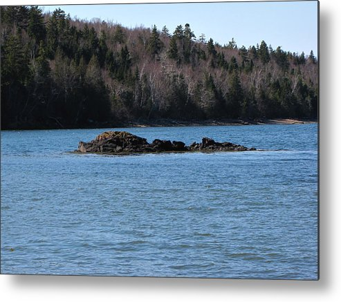 Seascape Metal Print featuring the photograph Spring Seascape by Melissa Parks