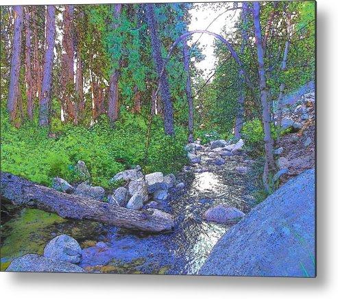 Idyllwild Metal Print featuring the photograph Strawberry Creek 1859 by Lisa Dunn