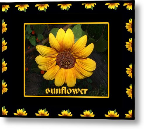 Vibrant Color Metal Print featuring the photograph Sunflower by Jan Tribe
