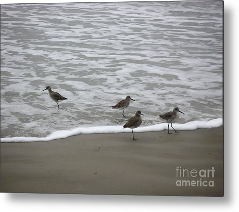 Nature Metal Print featuring the photograph The Gulf In Shades Of Gray - One Opposed by Lucyna A M Green