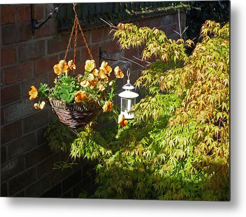 Hanging Basket Metal Print featuring the photograph The Lantern by Charles Stuart