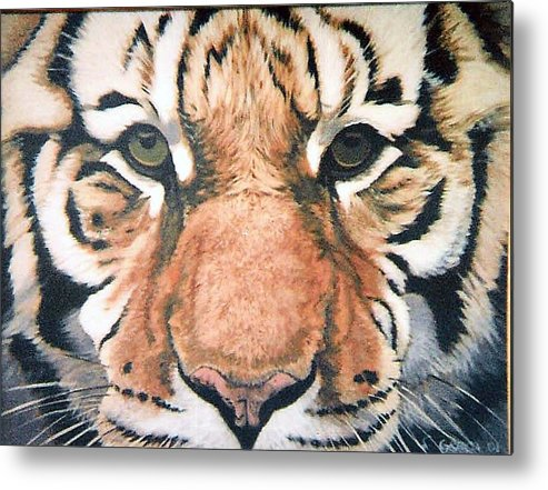 Tiger Metal Print featuring the painting Tiger by Steve Greco