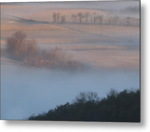 Nature Metal Print featuring the photograph What Lives In The Mist by Robert Margetts