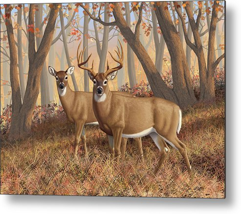 Deers Metal Print featuring the digital art Whitetail Deer Painting - Fall Flame by Crista Forest