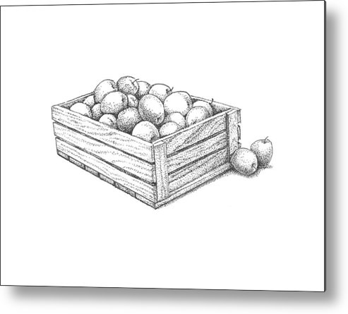 Apple Metal Print featuring the drawing Applecrate by Christy Beckwith