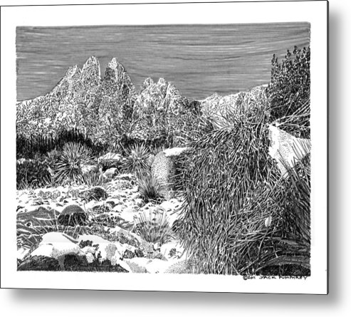 Framed Prints And Note Cards Of Ink Drawings Of Scenic Southern New Mexico. Framed Canvas Prints Of Pen And Ink Images Of Southern New Mexico. Black And White Art Of Southern New Mexico Metal Print featuring the painting Organ Mountain Wintertime by Jack Pumphrey