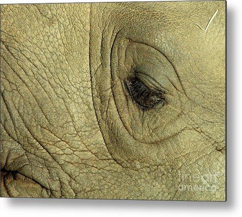 Rhinoceros Metal Print featuring the photograph Rhino Eye by Marc Bittan