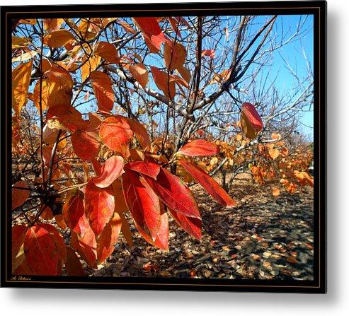 Autumn Metal Print featuring the photograph Autumn Colors 06 by Arik Baltinester