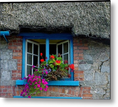 Adare Metal Print featuring the photograph Bright Blooms by PJ Cloud