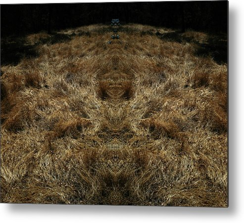 Grass Metal Print featuring the photograph Farview 2 by A paul Cartier