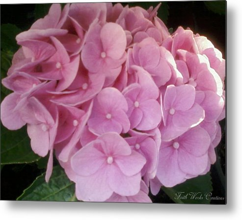 Floral Metal Print featuring the photograph Fwc Beautiful Pink Hydrangea by Faith Works Creations