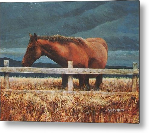 Hores Metal Print featuring the painting Montana Mare Study by Steve Greco