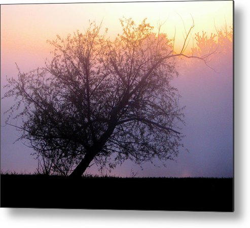 Trees Metal Print featuring the photograph Simple by Lonnie Tapia