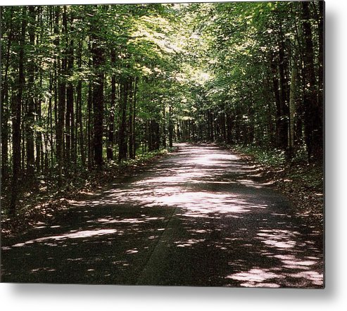 Landscape Metal Print featuring the photograph Sun And Shadow Road In Summer C3pdl by Lyle Crump