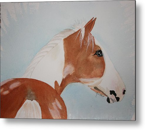 Horse Metal Print featuring the painting The Paint by Michele Turney