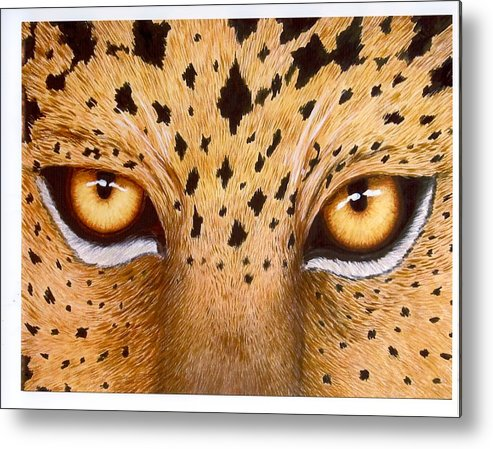Animal Metal Print featuring the painting Wild Eyes by Lorraine Foster