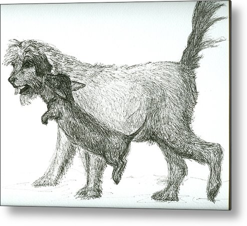 Dogs Metal Print featuring the drawing Best Friends by Laura Johnson