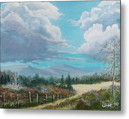 Lanscape Metal Print featuring the painting Down To The Meadow by John Wise