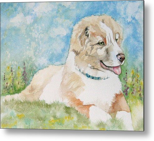 Canine Metal Print featuring the painting Hank by Gina Hall