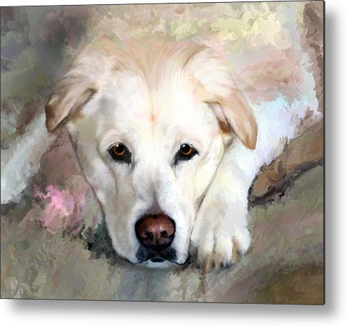 Pet Metal Print featuring the painting Casey Gone But Not Forgotten by Elizabeth Murphy