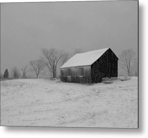 Nature Metal Print featuring the photograph Cold Winter Night by Martie DAndrea