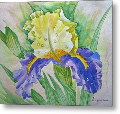 Flowers Metal Print featuring the painting Dew Drops Upon Iris.2007 by Natalia Piacheva