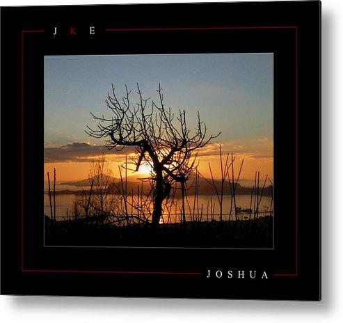 Tree Metal Print featuring the photograph Joshua by Jonathan Ellis Keys