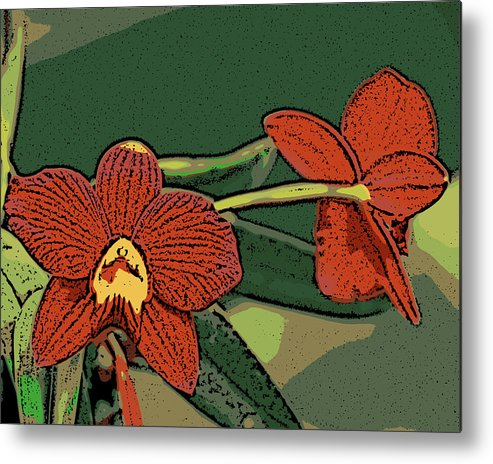 Orchid Metal Print featuring the photograph Orange Orchids by Ann Tracy