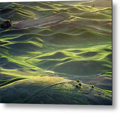 Palouse Metal Print featuring the photograph Palouse Rolling Sunrise - 1 by Jerry McCollum