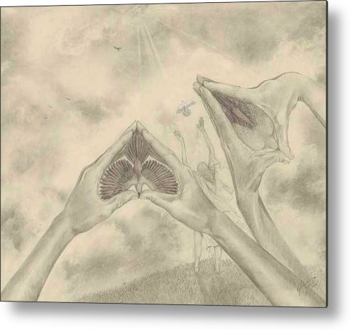 Birds Metal Print featuring the drawing Release by Julianna Ziegler