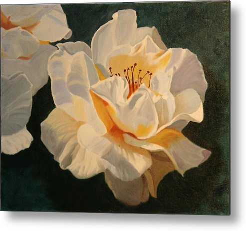 Floral Metal Print featuring the painting White Rose by Robert Tower