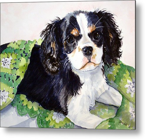 Canine Metal Print featuring the painting Casey by Gina Hall