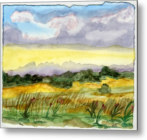 Landscape Metal Print featuring the painting Field And Sky 2 by Warren Thompson