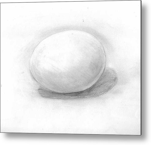 Egg Metal Print featuring the drawing observation EGG ON WHITE by Katie Alfonsi