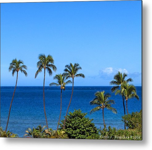 Palm Trees Metal Print featuring the photograph 7 Palms by Nicole I Hamilton