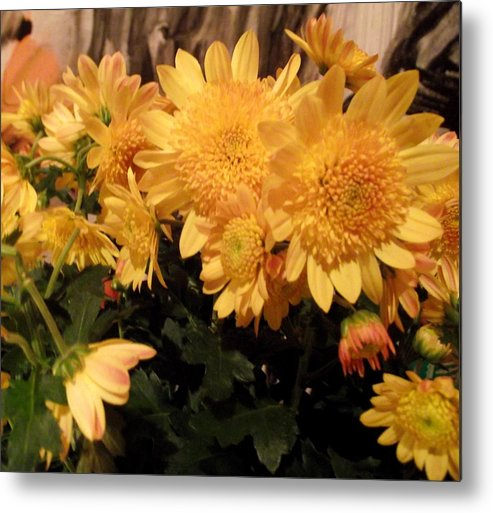Chrysanthenams Metal Print featuring the photograph Spirit Of Flower by Oberon  Ahura Star