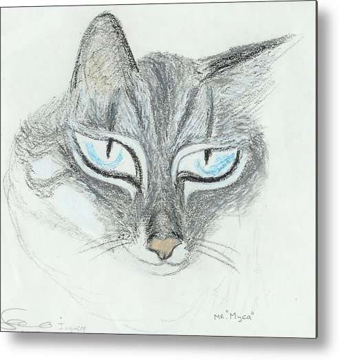 Cat Metal Print featuring the drawing All Eyes by Ingrid Szabo
