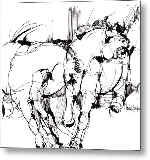 Horse Metal Print featuring the drawing Horses by Maria Grazia Repetto