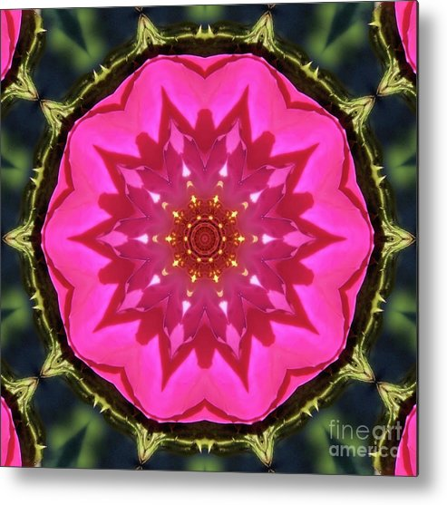 Flower Metal Print featuring the photograph Flower Power Kaleidoscope Artifact by Amy Delaine