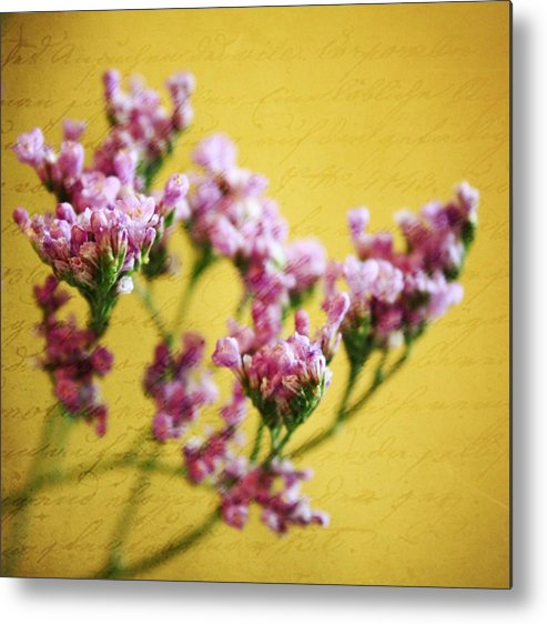 Static Metal Print featuring the photograph Just Beginning by Cathie Tyler