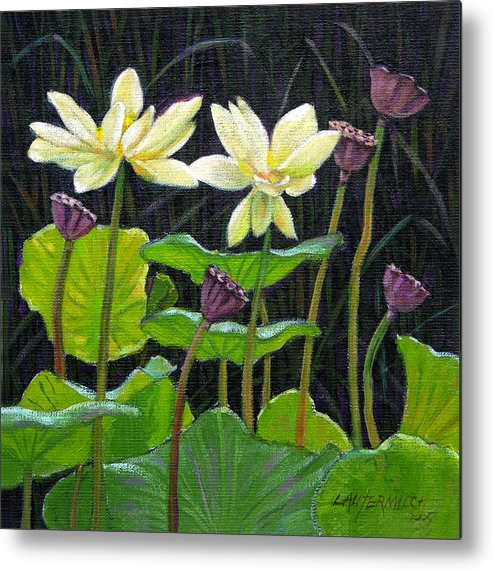 Lotus Metal Print featuring the painting Touching Lotus Blooms by John Lautermilch