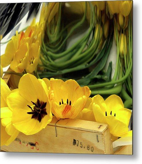 Flowers Metal Print featuring the photograph Yellow Tulips by Bernard Jaubert