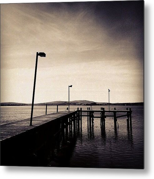 Black And White Metal Print featuring the photograph 2 Bird Dock by CML Brown