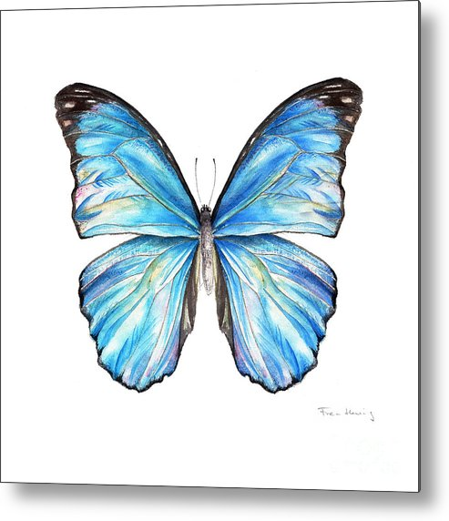 Butterfly Metal Print featuring the painting Blue Morpho Butterfly by Fran Henig