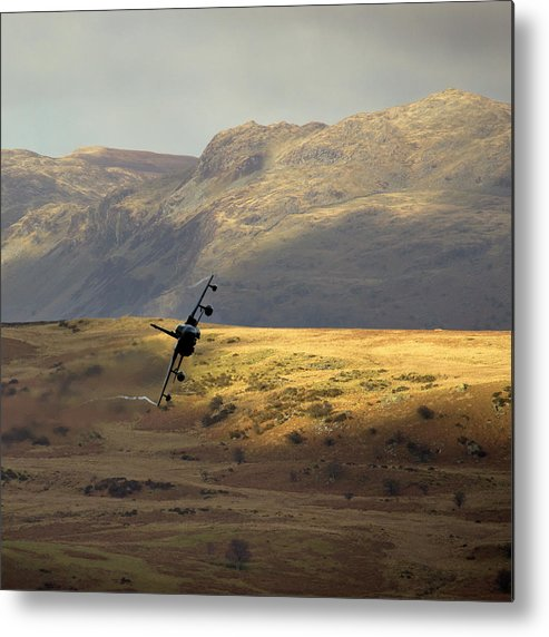 Great Britain Metal Print featuring the photograph Fields Of Gold by Angel Ciesniarska