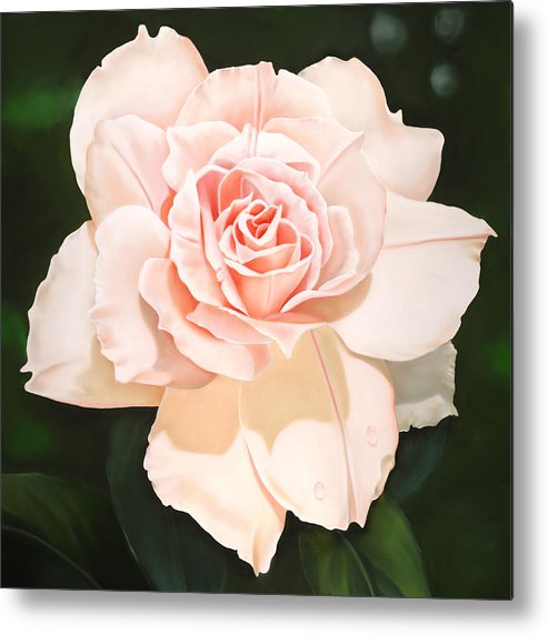Flower Metal Print featuring the painting Pale Pink Rose by Ora Sorensen